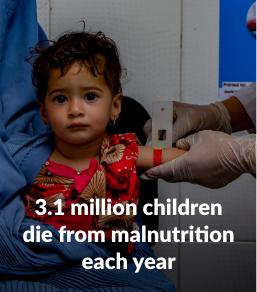 3.1 million children die from malnutrition each year