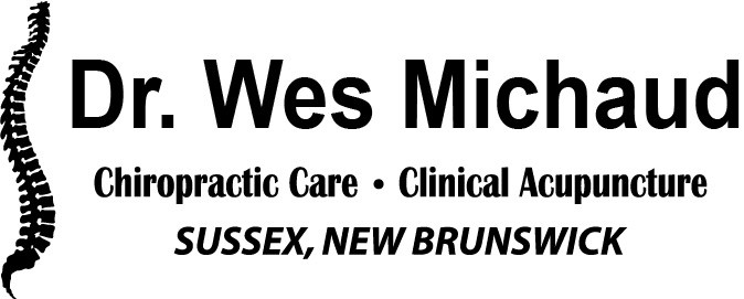 Dr. Wes Michaud Chiropractor
