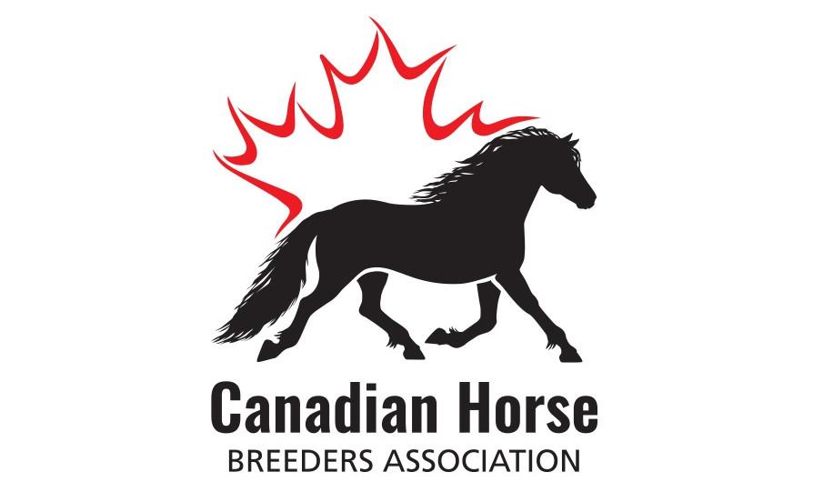 CHBA - Canadian Horse Breeders Association - 3 memberships (Canadian Division Classes)