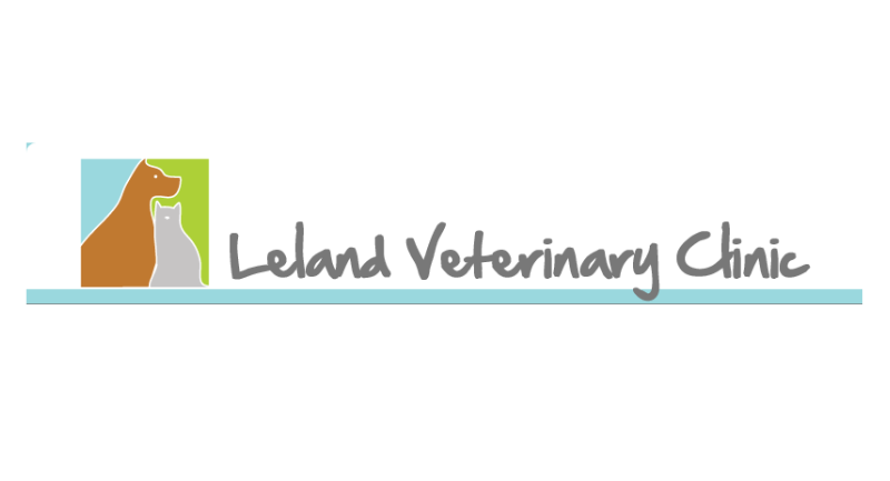 Scarecrow - Leland Veterinary Clinic