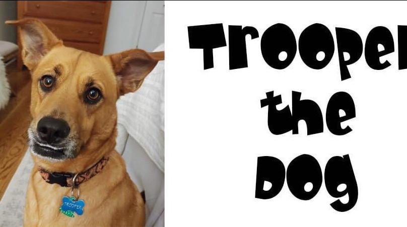 Trooper the Dog