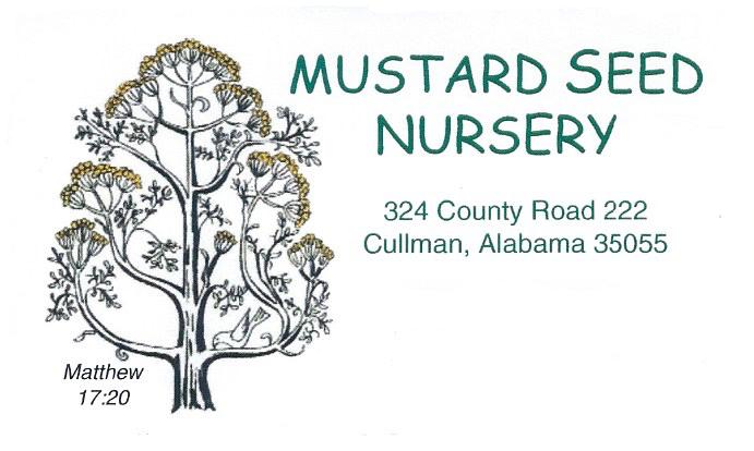 Mustard Seed Nursery