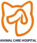 Animal Care Hospital