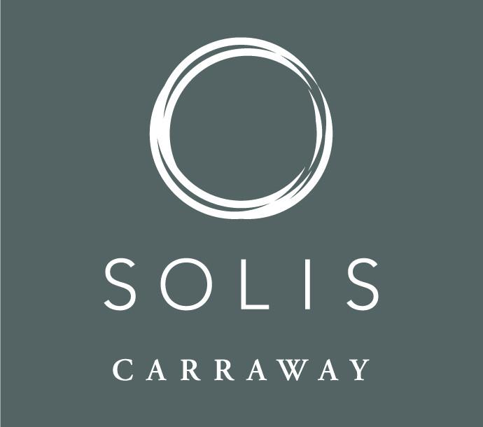 Silver - Solis Carraway Apartments