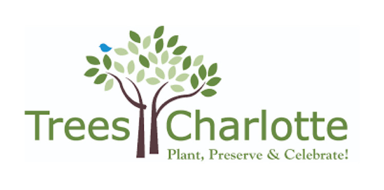 Trees Charlotte