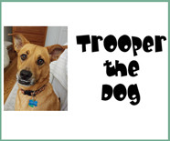 Trooper the Dog
