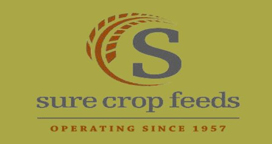 Sure Crop Feeds - Open Breed Division