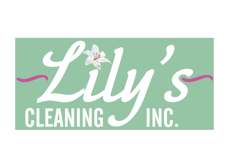 Scarecrow - Lily's Cleaning